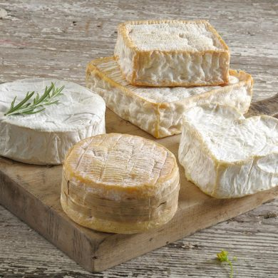 On the AOP Cheese Trail