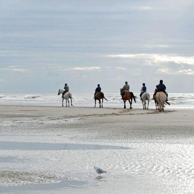 Top beaches for horse-riding