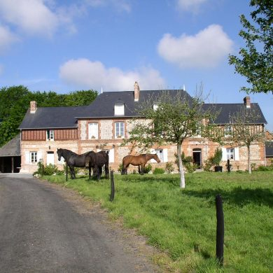 Self-catering accommodation with stables