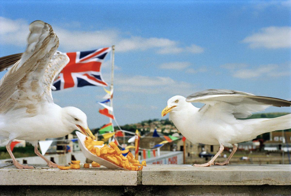 Westbay, England,1996