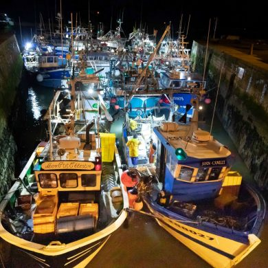 The return of scallop fishing boats to Port-en-Bessin